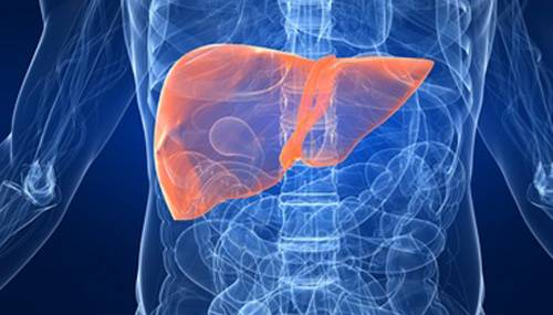 All about liver disease