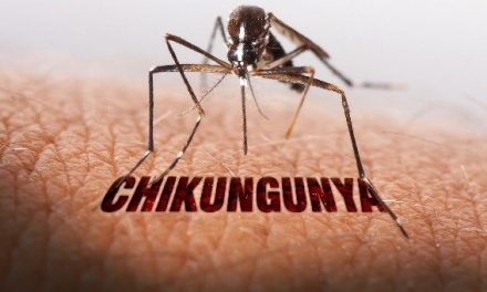 Fact on Chikunguya you must know
