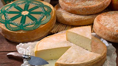 Listeria outbreak linked to cheese