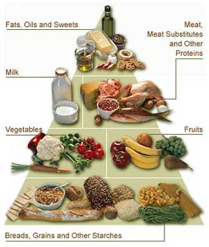 Diabetes Meal Plans and Healthy Diet