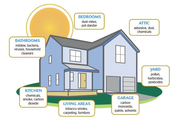Ways to Reduce Air Pollution in your house