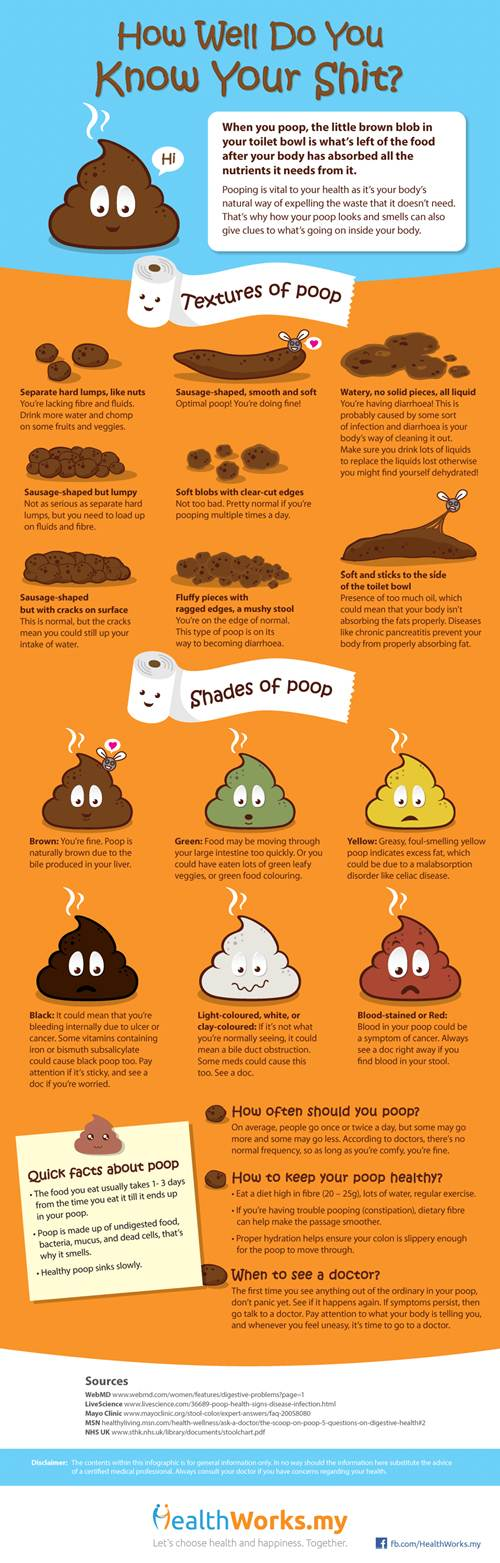 Infographic : How Well Do You Know Your Shit ?