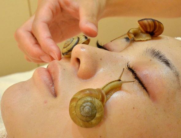 snail-facial-421396