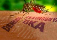 Malaysia increased monitoring following Zika cases in Singapore