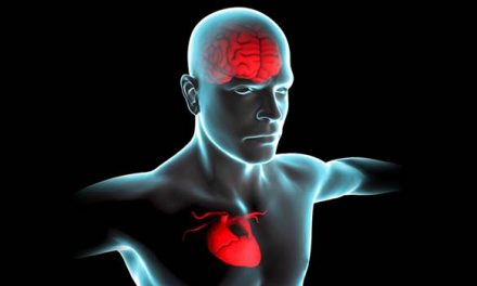 Heart disease and brain health: Looking at the links