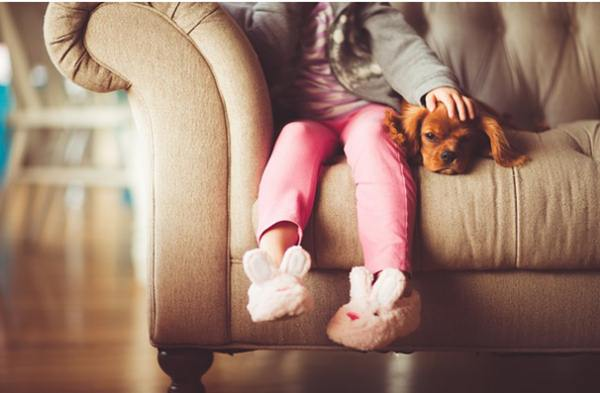 Home Investments that Keep Your Child Safe