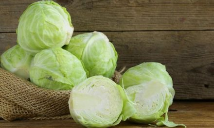 How Cabbage Can Help You Lose Weight