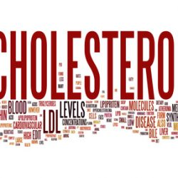 Foods That Will Help Lower Your Cholesterol