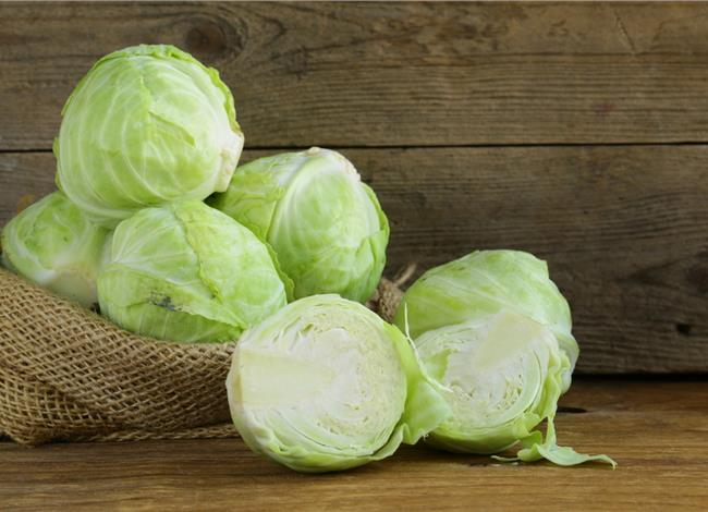 cabbage weight loss